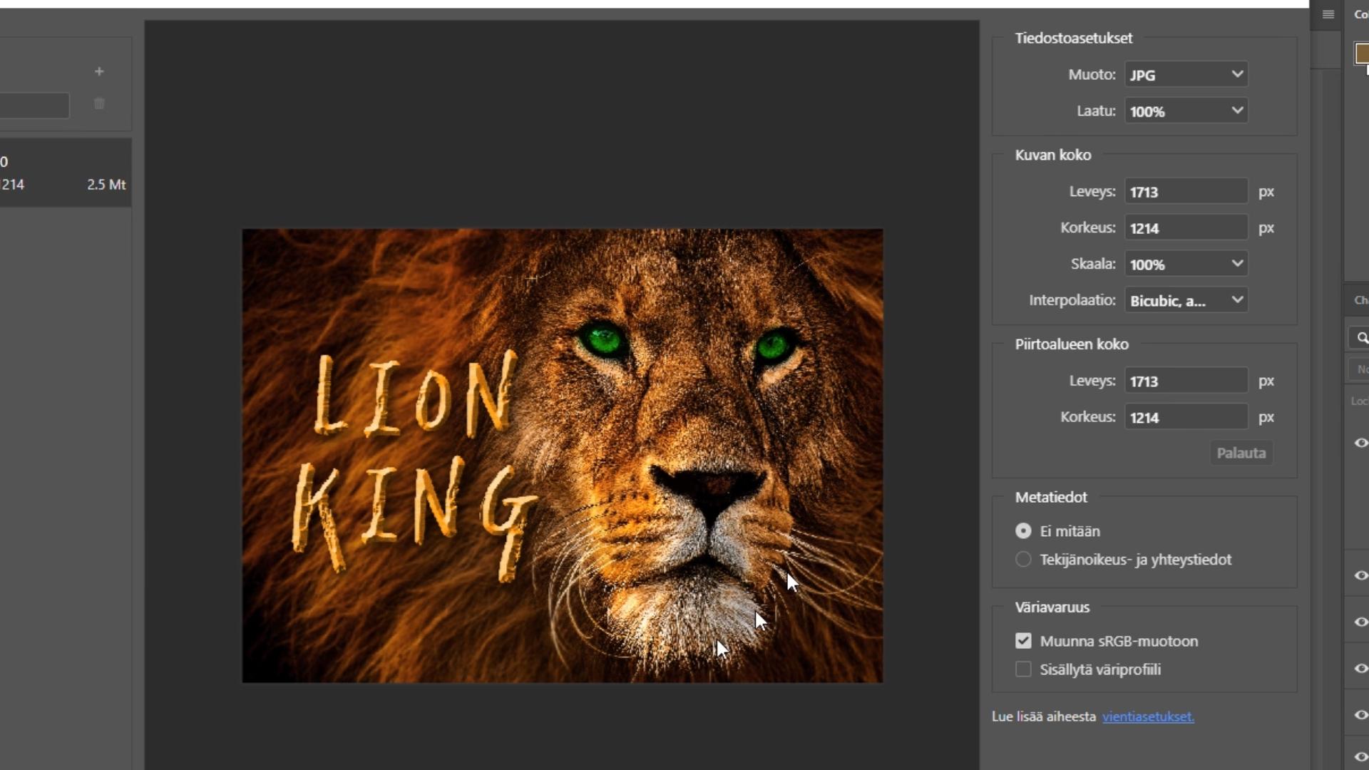 Tulostusasetukset Adobe Photoshop kuvankäsittely
